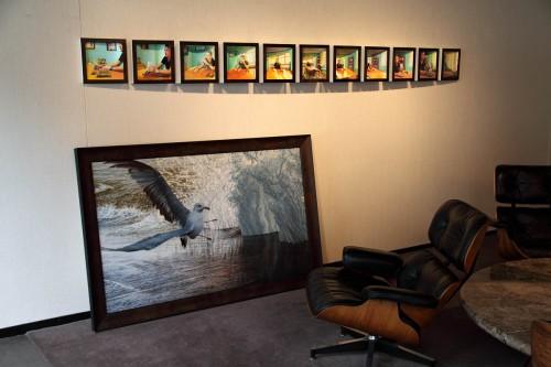 """""""Sudden Flight"""" at Robert Kidd Gallery"""
